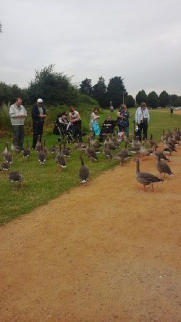 Sponsored walk raises money amenity fund
