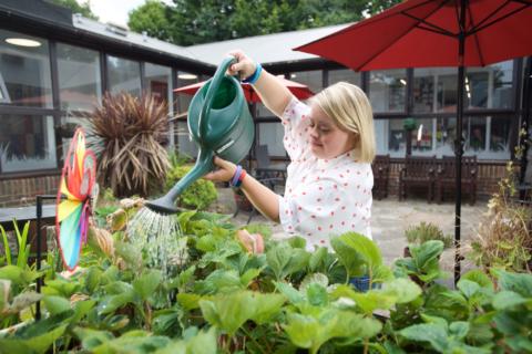 Roundwood Garden Centre & Café